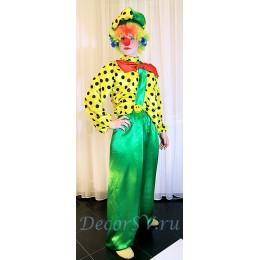 """Костюм для проведения детского праздника """" Клоун"""": штаны+рубашка+кепка+парик+бантик+носик"""